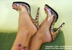 Janet Mason from Foot-Tease.com Review